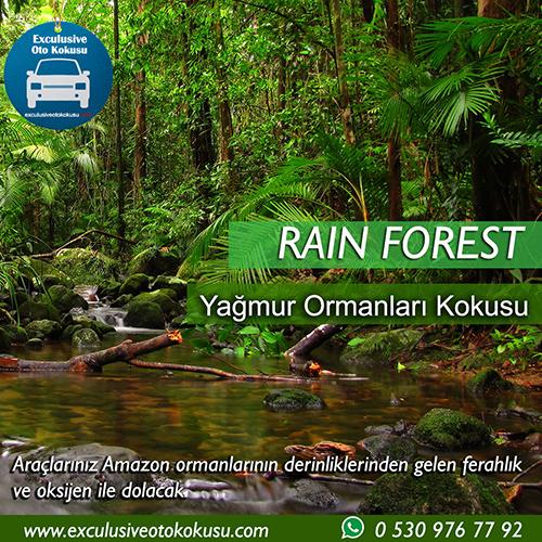 rain-forest-oto-kokusu