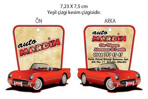 Auto Mardin-01